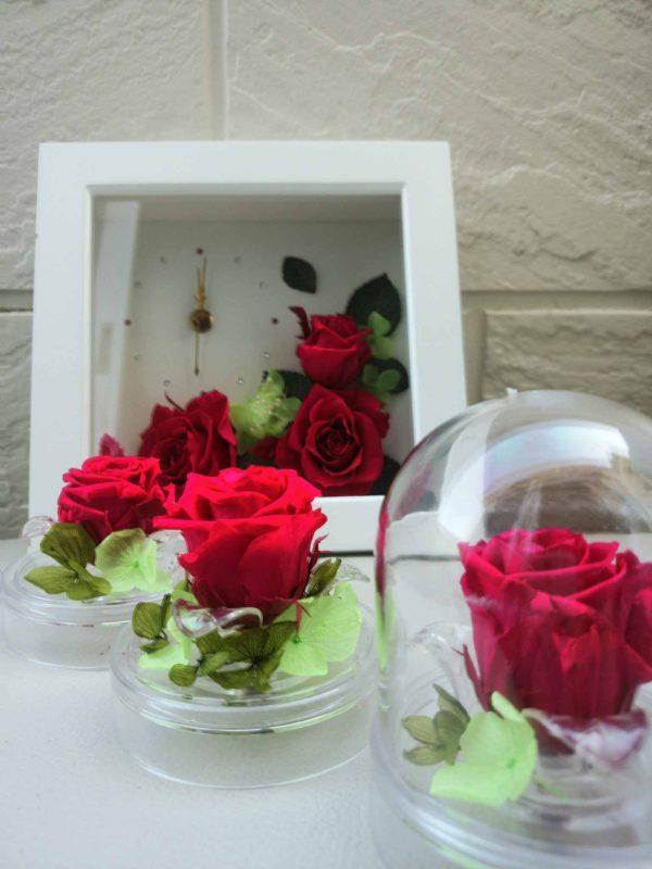 赤いバラのサムネイル